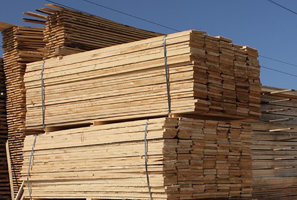 The Truth of The Matter Concerning the Surge of Lumber